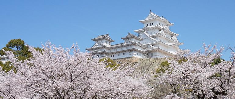 "The ""White Heron"" castle of Himeji"